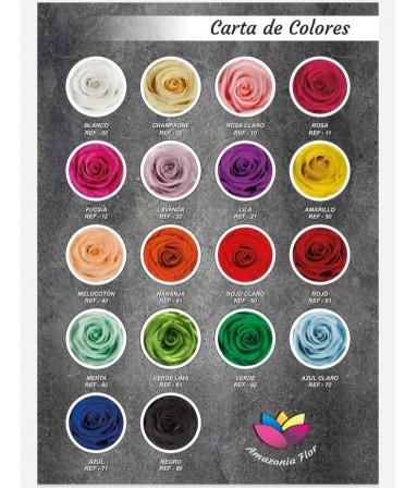 carta-colores-1.jpg